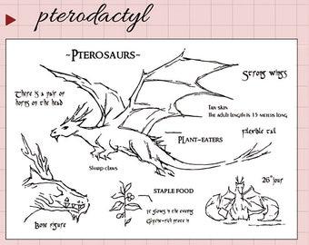 clear Stamp Set / Clear Stamps /pterosaur Transparent Stamp