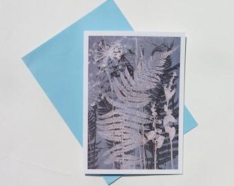 Blank art card greetings card A6 148mm x 105mm Ferns from a Coastal Footpath Modern floral botanical design in dusky blue FREE SHIPPING