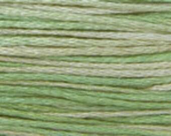 2181 Cactus - Weeks Dye Works 6 Strand Floss