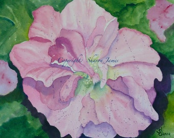 Confederate Rose - Original Watermedia Painting 11 inches x 9 inches by Sharon James