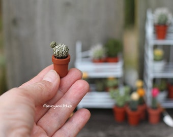 Dollhouse Miniature Crochet Cactus Potted Plant, Tiny Winy Hedgehog Simple Cacti in a Pot, Fancy Collectable Gift for Cactus Succulent Lover