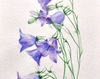 Bluebells Original watercolor painting of flowers, watercolor flowers, floral painting, wall  art painting ,flower painting