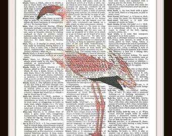 Flamingo no. 2- Antique Illustration - Vintage Dictionary Art Print--Fits 8x10 Mat or Frame