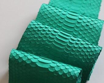 Turquoise water snake skin