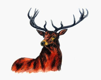 "Deer Art Print. Scottish Highlands Wildlife Art Print. Stag Wall Art. Mounted to 8"" x 10"" (20 x 25cm)"