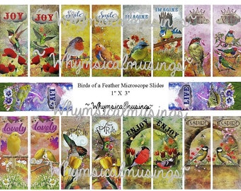 Digital Collage Sheet~ Birds of a Feather Microscope Slide~ Jewelry~ Mixed Media~ Instant Download
