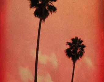 Palm Tree Art Print - Red Pink Coral Sky Black Silhouette Beach House Wall Art Home Decor Photograph