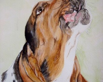 Basset Hound Print, Basset Hound Art, Basset Hound Giclee Print, Basset Hound Painting, Basset Hound Gifts, Basset Watercolor