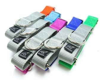 "Houndstown Banner Silver Split Martingale Collar, 23 Colors, 1"" Width, Nickel Hardware"