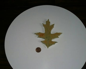 Oak Leaf magnet