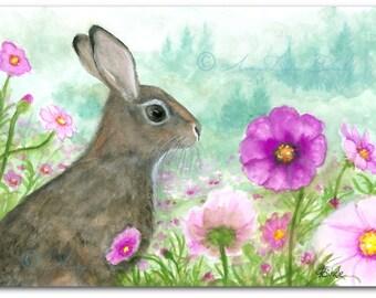 Wildlife Wonders Rabbit - Cosmo Flowers - Art Prints by Bihrle wd234