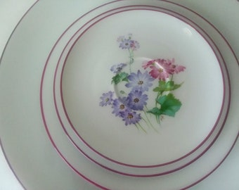 4 Piece -NOS- CH Field Haviland -Limoges France Dinnerset -Pattern CHF1041-Showroom Condition