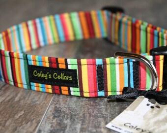"""Dog Collar, Dog Collars, Boy Dog Collar, Girl Dog Collar, Striped Dog Collar, Vibrant Dog Collar,  """"A Sunshine Day"""""""