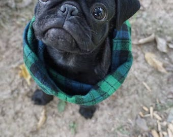 Flannel Dog Infinity Scarf