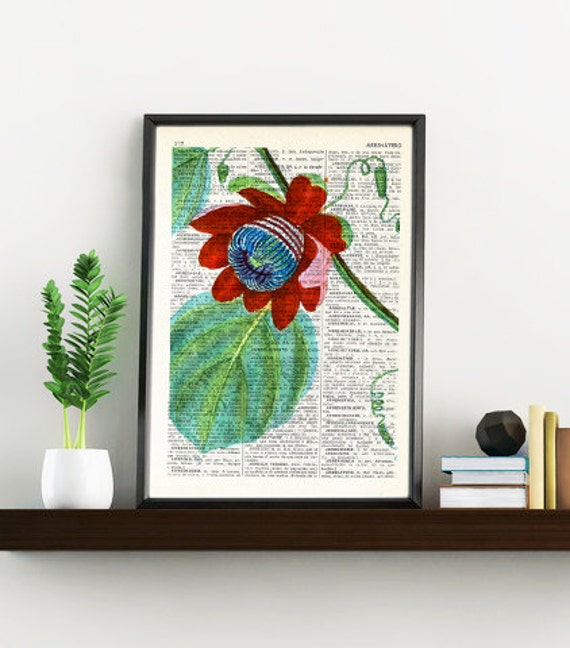 Vintage Book Print Dictionary or Encyclopedia Page Print-  Passiflora Passion Flower on Vintage Bookart art BFL132