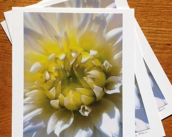 White on White Photo Art Card