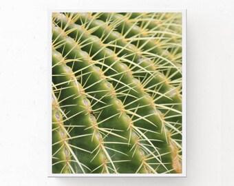 CACTUS ART PRINT, Printable Cactus, Digital Download, Cactus Download, California Wall Art, Cactus Poster, Desert Photography, Cactus Print