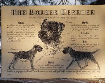 Antique styled dog standard - Border Terrier
