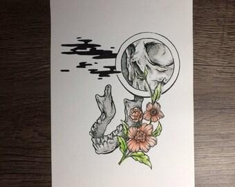Mandible (Original drawing)