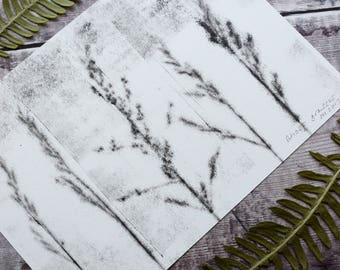 Botanical mono print: Ghost grasses