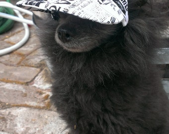 dog hat - Ball Cap