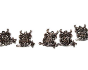 Set of 5 owls charm