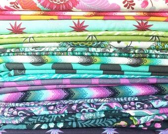 Tula Pink Fox Field Fat Quarter Bundle OOP - 19 Fabrics