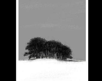 Snowy copse | Limited edition fine art print from original drawing. Free shipping.