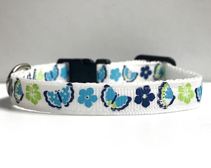 """3/8"""" blue butterflies collar"""
