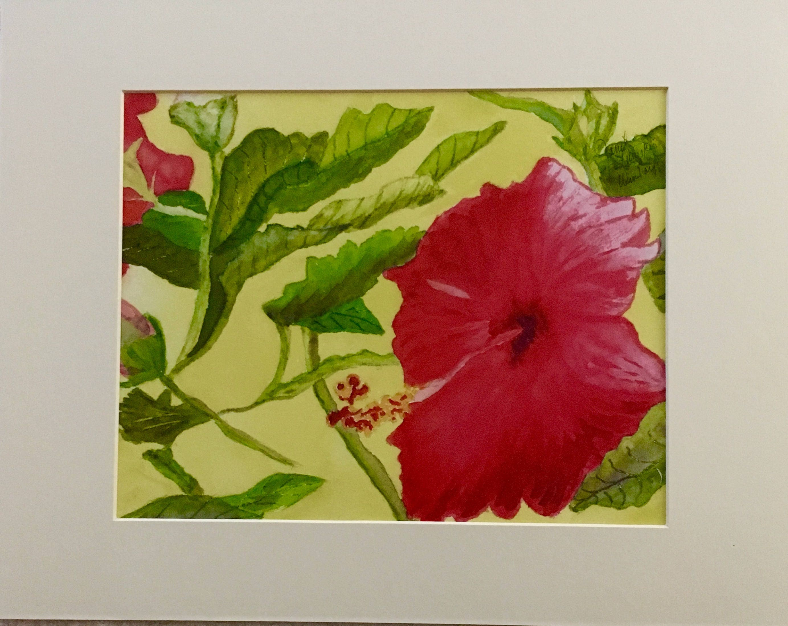 Hibiscus flower description images flower wallpaper hd watercolor print of hibiscus flower description izmirmasajfo images izmirmasajfo Gallery