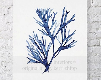 Seaweed Wall Art Print in Denim Blue - Blue Coral Art - Blue Seaweed Print - Sea Life Art Print - Coral Art Print - Seaweed V in Denim 17x22