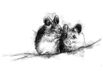 Two mice | Limited edition fine art print from original drawing. Free shipping.