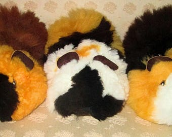 Large Alpaca Fur Guinea Pigs Hand Picked from Hundreds! ULTRA SOFT Baby Alpaca Absolute Fullest & Fluffiest