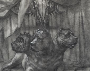 Cerberus - Guardian of the gate to underworld - 8 x 10 art print of a charcoal drawing