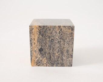 Fossilized Stone Object