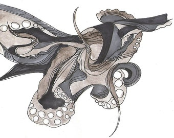 "Octopus Drawing - No Accelerometer for This Octopus - Fine Art Giclee Print 7/50 of 6""x4"" Drawing - Squid Ink"