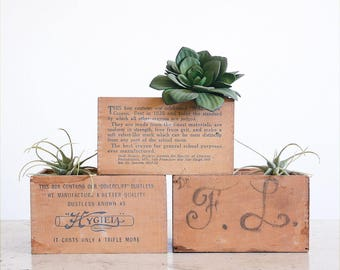 3 Vintage Wood Crayon Boxes / Antique Crayon Box / Waltham Dovercliff / Instant Collection
