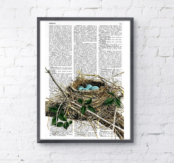 Robin bird nest print on Book page Nest and eggs Art Print giclee Poster Print  Art Wall Hanging poster ANI046