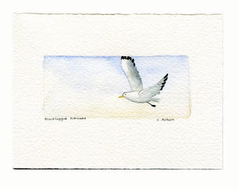 Original Seagull Painting Fine Art Card For Sale, beach artwork