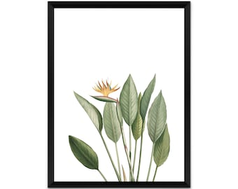 Botanical wall art, plant, leaves, picture, print, illustration, poster,wall decor, A4, A3