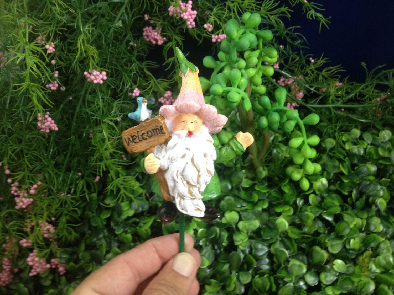 Gnome miniature ,Fairy Garden,Fairy garden kit, Terrarium kit ...