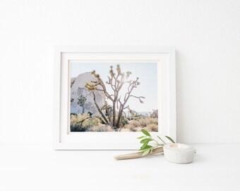 joshua tree home decor, nature fine art print, desert wall art, fine art landscape photography, california print, home decoration gift