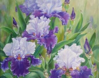 Flowers, irises