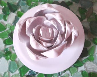 Shell pink painted white