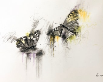 Making Colours Fly - butterfly drawing, butterfly painting, butterflies, original butterfly art, charcoal animal art, wildlife drawing