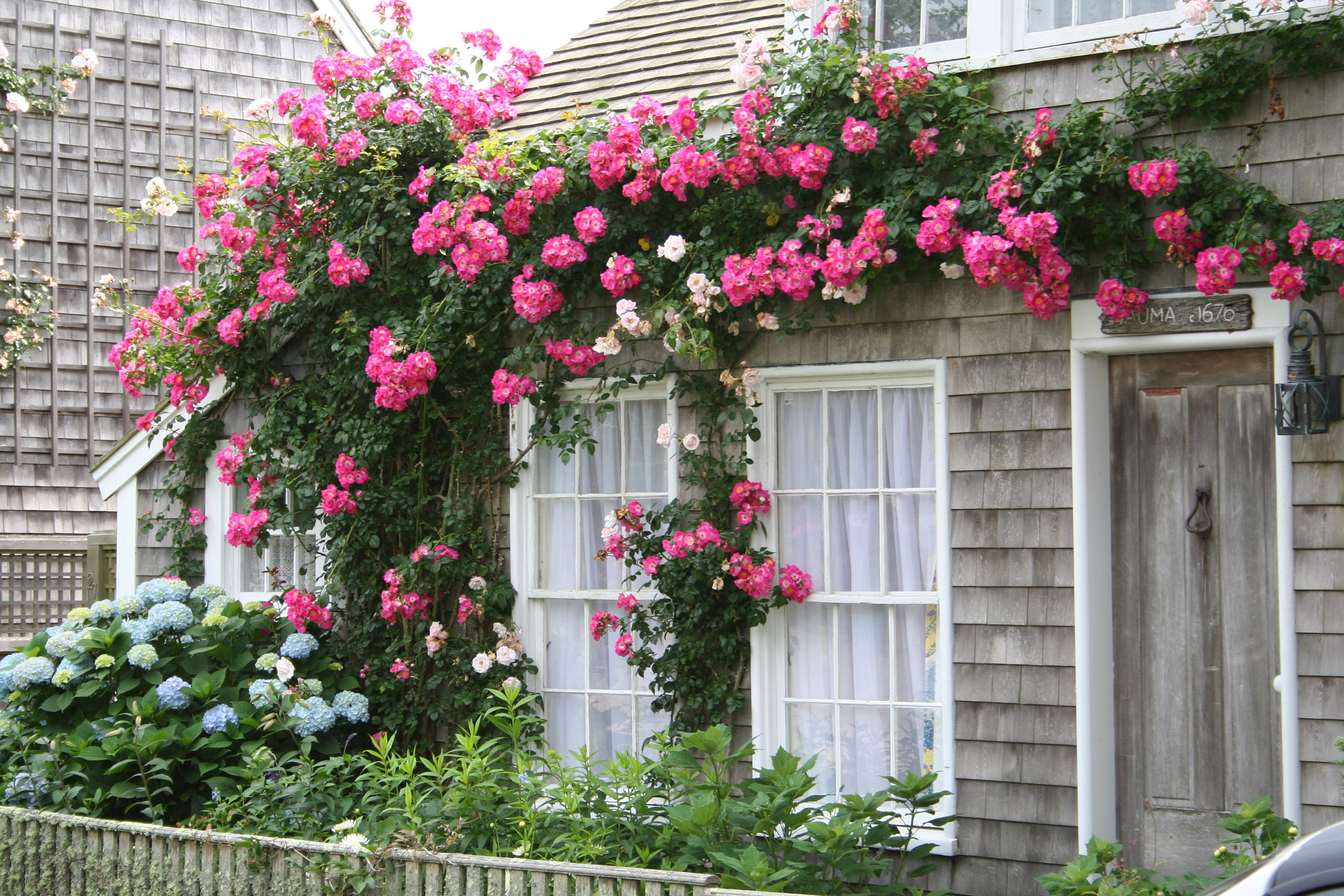 cottage window pin cottages pinterest cod of cape nantucket box