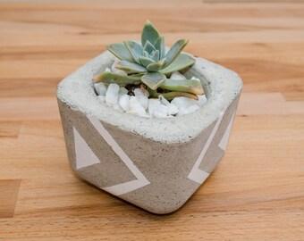 Concrete Planter, Succulent Plant Pot, Handmade, Home Decor, Cement Planter, Includes Succulent, Gift Idea, office decor
