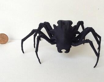 Warp Spider -