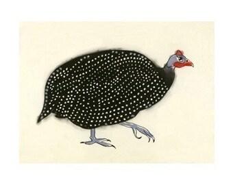 Bird Art -    Geraldine the Guinea Fowl - (6 X 4 print) - 4 for 3 SALE