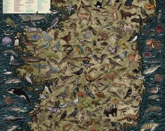 The Wildlife of Ireland Map - Illustration print